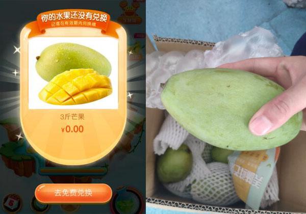 京东种树领水果要浇多少次水才成熟?