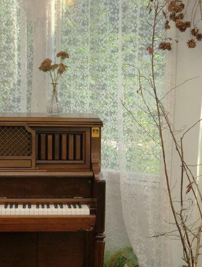 大良玻璃屋怎么样?旧钢琴
