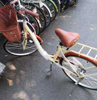 拼多多砍到的自行车