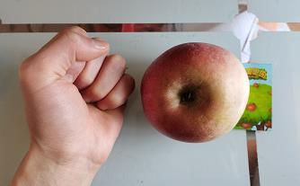 美团免费领水果一箱有多少苹果?